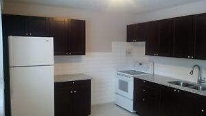 2 BEDROOM APARTMENT 4 RENT RENOWED TOP 2 BOTTOM ARGYLE MALL $877