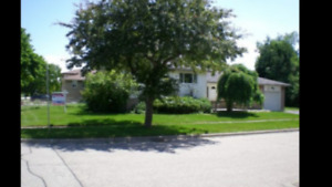 HOUSE FOR RENT IN SCARBOROUGH ( NELISON AND OAKMEADOW )