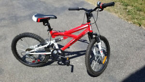 """** 20"""" Youth Bicycle - 5 speed - Like NEW - USED ONCE ONLY! **"""