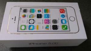 Apple iPhone 5s Mint Mint
