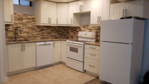 Rare find-Executive Basement 3-Bdr+fenced bcky-Pioneer Park