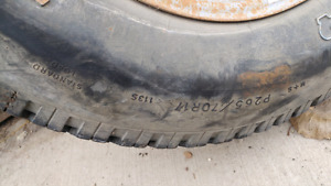 Spare tire for ford truck
