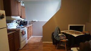 Mayfair 2  bedroom bsmt suite  available June 1st