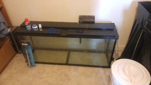 Fish tank with start up supplies