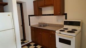 Centrally Located Bachelor Apartment