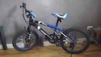 Kids' Mountain Bike