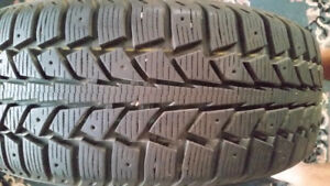 Tiger paw tires for sale.