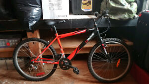 Ross Jr. Mountain Bike