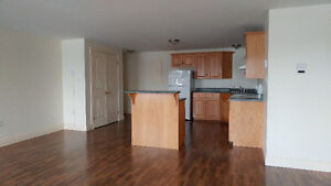 Spacious apartment in quiet downtown location - Woodstock
