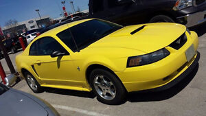 2003 Ford Mustang (May trade for truck)