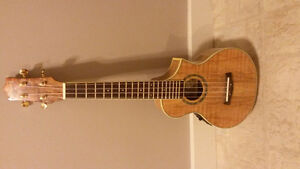 Ibanez Acoustic Electric Ukulele