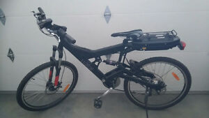 LUXOR EVOLUTION Central Drive 250 E-Bikes