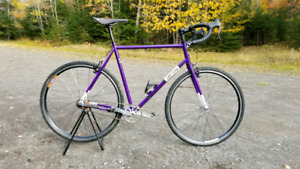 All city Nature boy with Sturmey Archer 3 speed