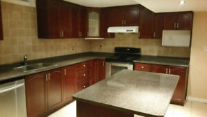 Big Beautiful Bachelor Basement Apartment Available For Rent