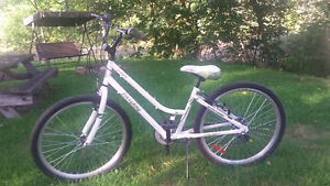 21 Speed Cruiser Bicycle