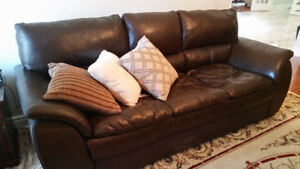 Dark Brown Leather Couches