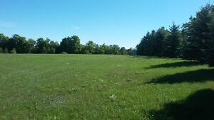 5 acres of land available for rent plus a huge workshop/storage Peterborough Peterborough Area image 5