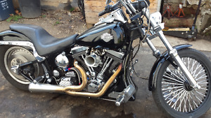 120hp harley softail (wolf in sheep's clothing)