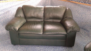 2 seater and 3 seater couches