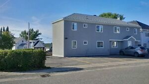 2 bedroom Secure Building Apt close to hospital & Gilles Lake