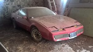 *BARN FIND* 1982 Firebird T-Top, Red
