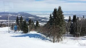 Ski week Condo -near Mont Ste Anne and le Massif