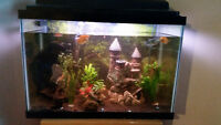 30 gal fish tank, includes fish, live plants and all accessories