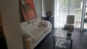 Brand New Condo - Shared, Furnished - Pool, Gym,   More