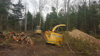Construction/ Demolition/ Tree Removel/ Clean Up Services