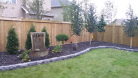 Let Limitless Landscaping help you with your back yard project!