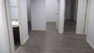 Low price for brand new big room