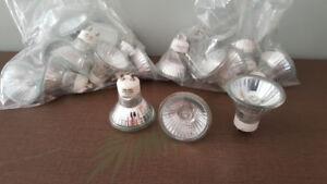 Pot Light Bulbs