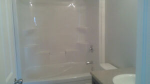 Brand new detech home for rent in south london London Ontario image 4
