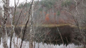 Lake front property, 20 acres