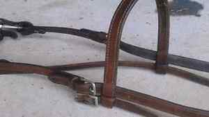 Bridles for Sale