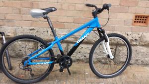 Bike mtb giant mtx225