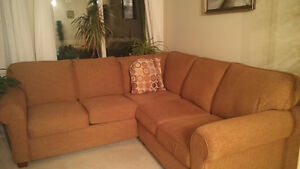 Large sofa (extremely good condition)