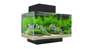 Fluval Edge 6 Gallon Aquarium  Kitchener / Waterloo Kitchener Area image 2