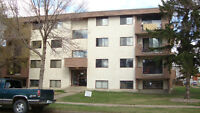 Fully Renovated Large 1-Bedroom Suite Near GMC