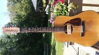 Fender Acoustic 12 string with A/M PICKUP!
