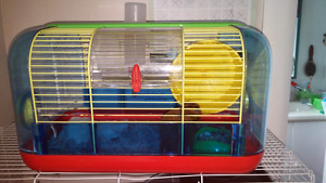 Hamster with cage and stuff
