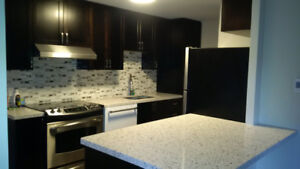 3 Bedroom Renovated Townhome - Taunton & Simcoe
