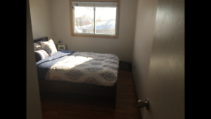 Sublet student rental in North Bay