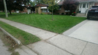 Accepting Fall cleanups and Lawns
