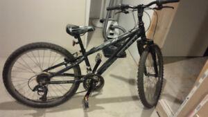 Bike Trek MT220