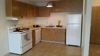 Spacious 1 Bedroom Apartment w/ Huge Balcony! Available July 3