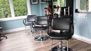 Freedom in your own business as a hairstylist Cambridge Kitchener Area image 1