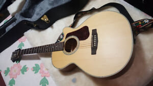 Brand New Cort Acoustic/Electric & Amp