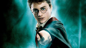 Harry Potter Transfiguration Town Oct 13-15