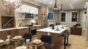 Custom Kitchens selling at Budget Pricing